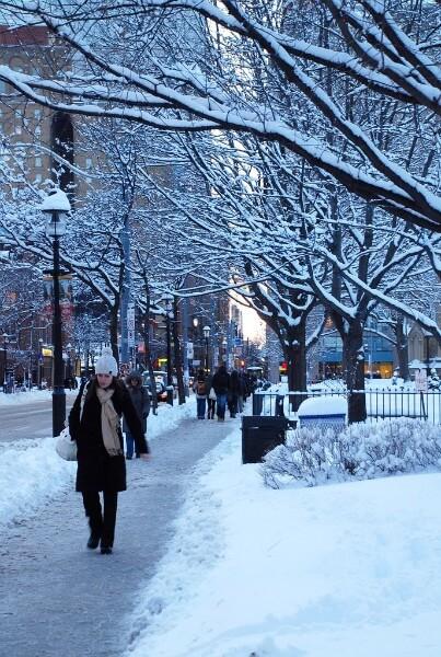 トロントの冬の景色
